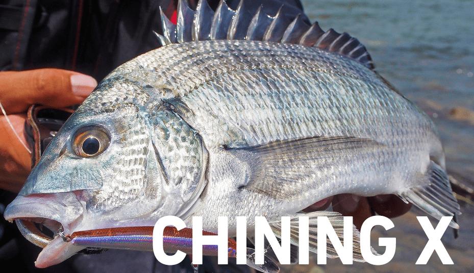 ダイワの高コスパなチニングロッド新製品「チニングX」