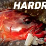 ダイワの低価格帯ロックフィッシュ専用ロッド「ハードロックX」お土産確保に必須。